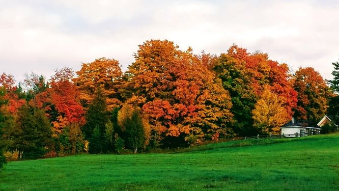 Southern Ontario, Canada, fall destination