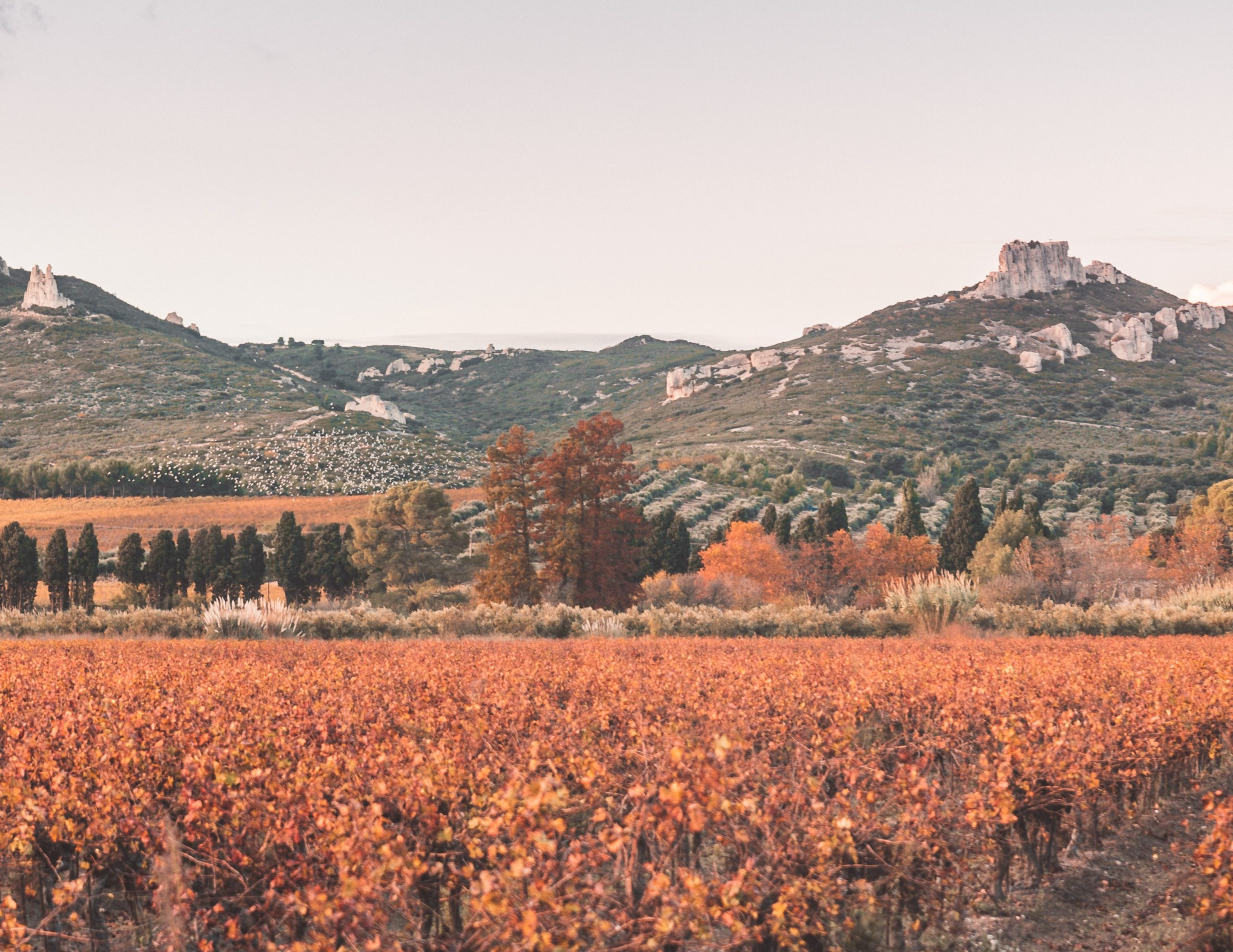 Provence, France, fall destination