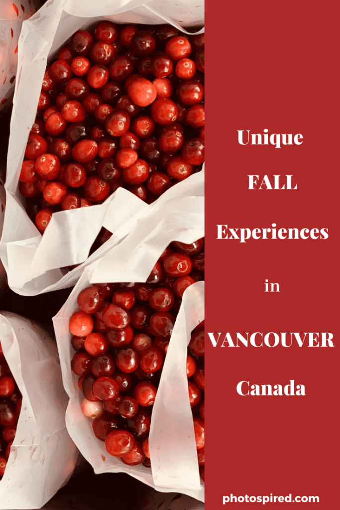 Pinterest ultimate fall experiences in Vancouver