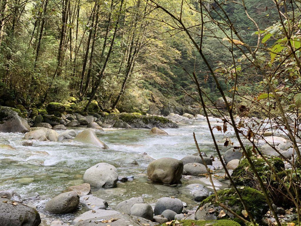Lynn Creek at Lynn Canyon in North Vancouver
