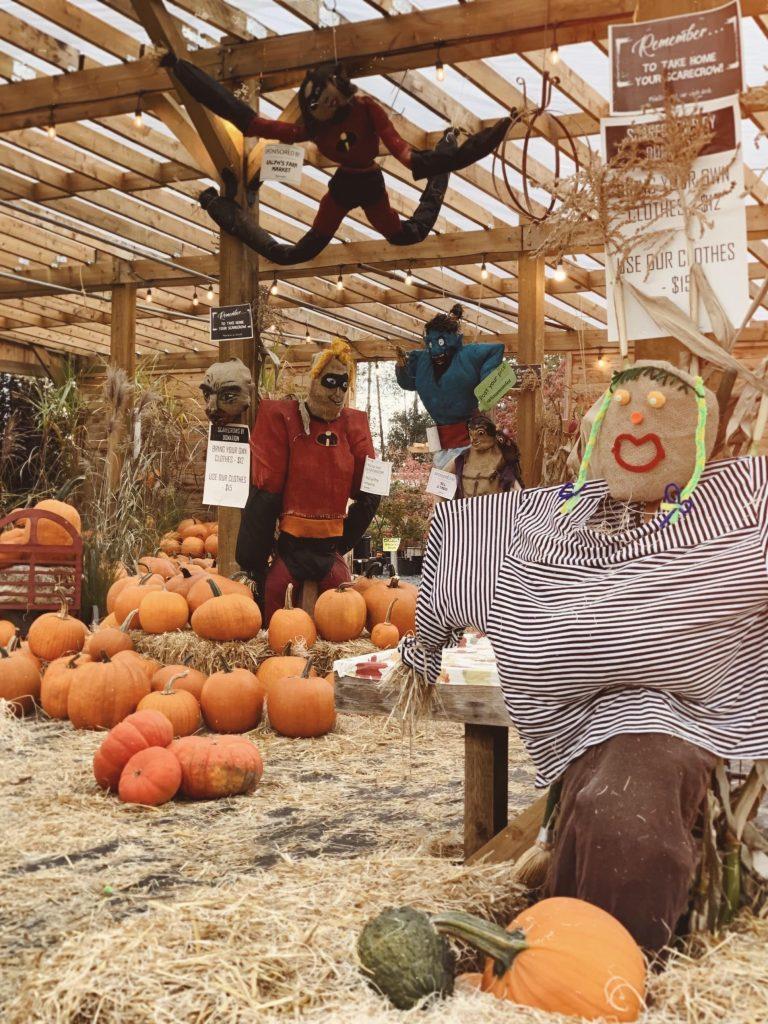 Fall season scarecrow festival at Art's Nursery garden center