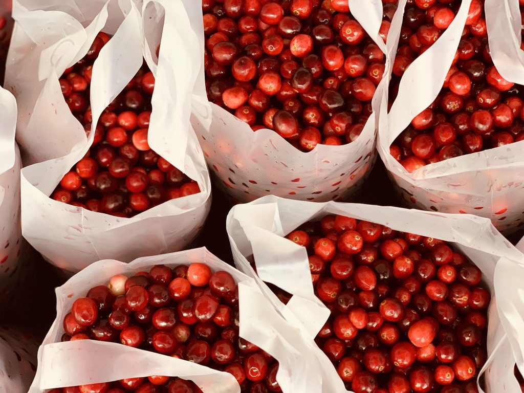 Bags of fresh cranberries on sale at the cranberry festival in Fort Langley