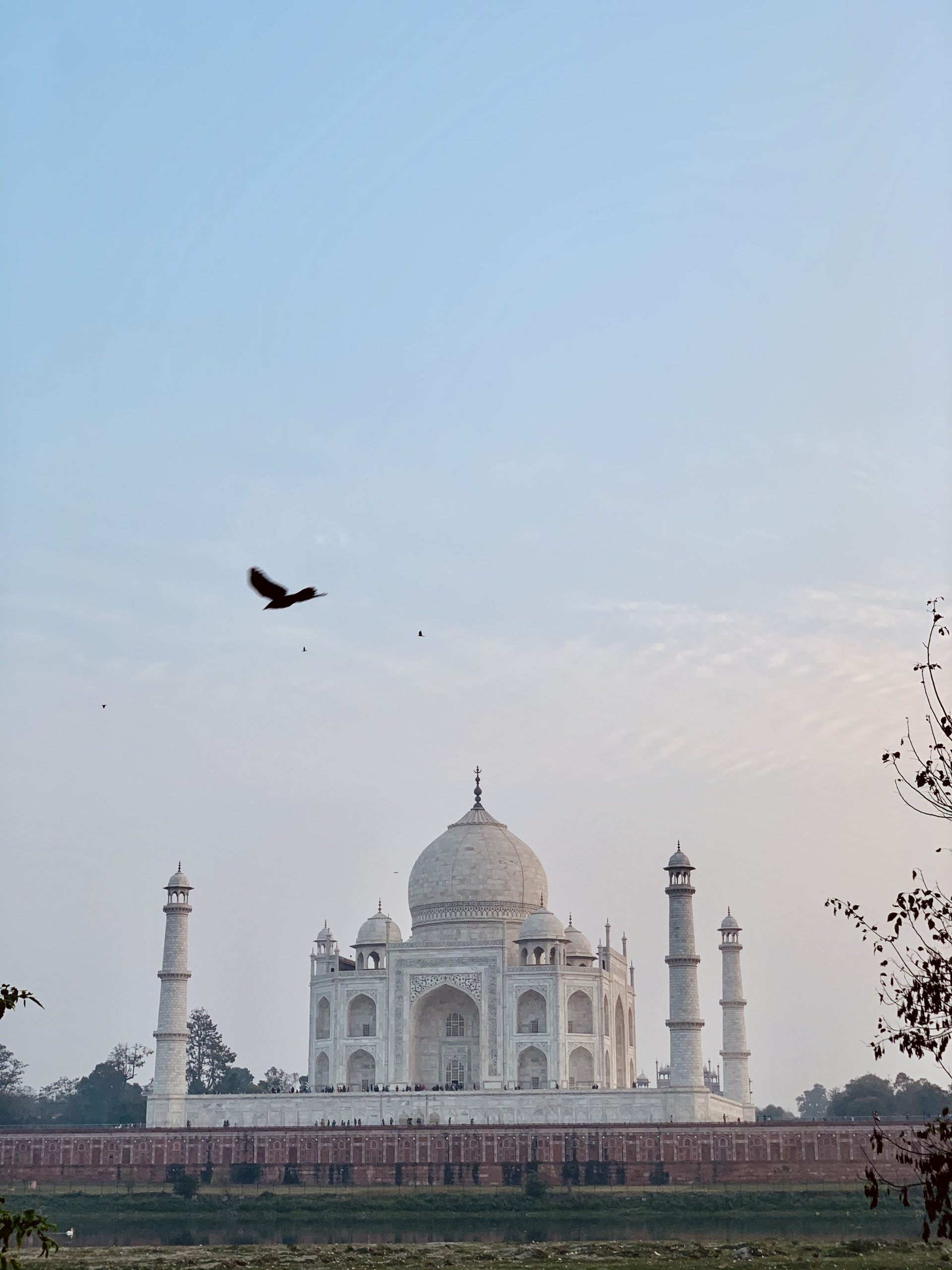 Metab Bagh has one of the best views of the Taj Mahal